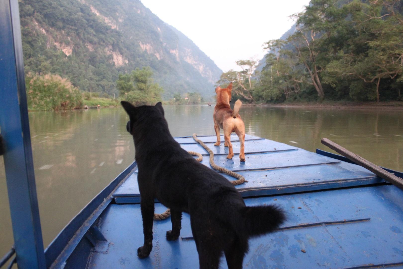 Visiter Ba Be - Vietnam