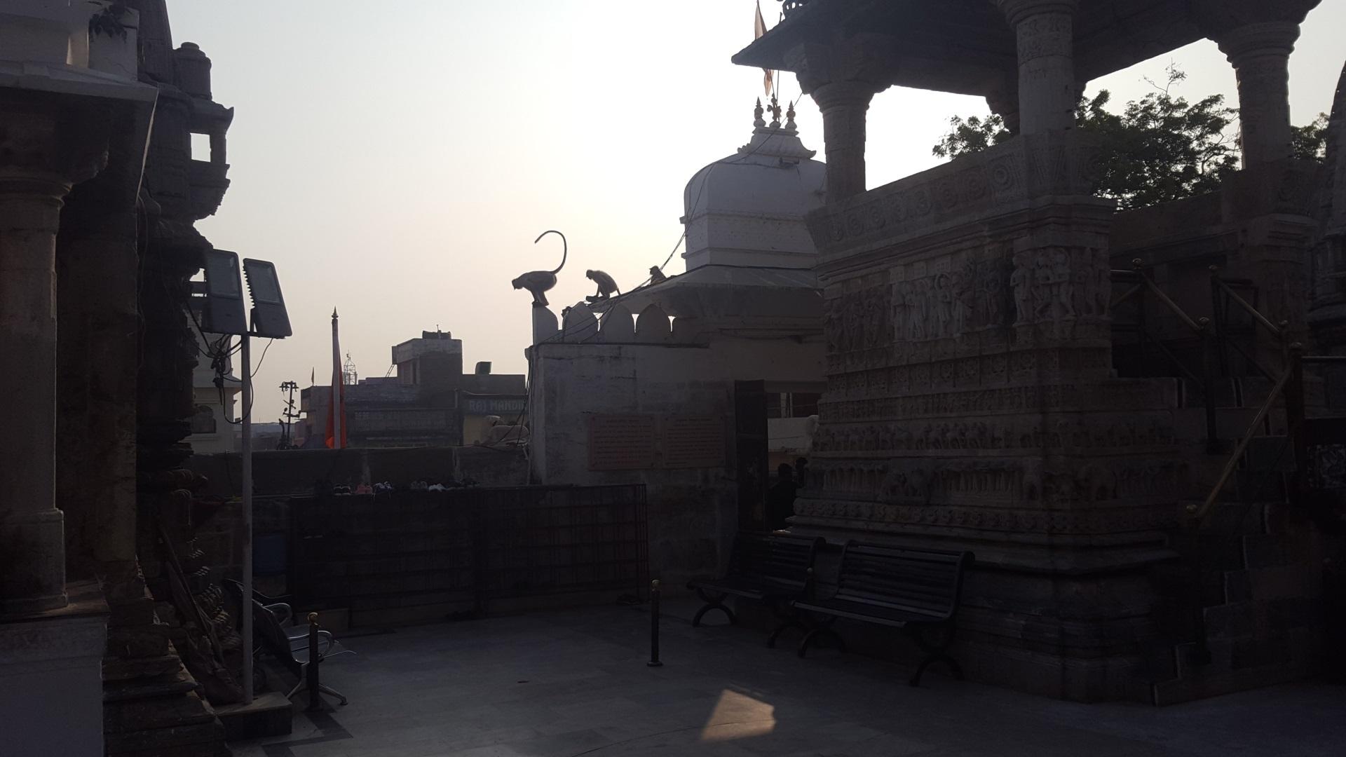 Visiter Udaïpur - Inde