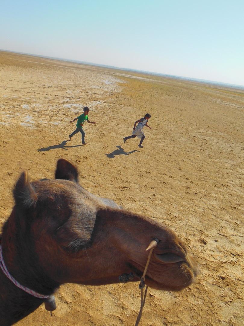 Visiter Le désert du Thar - Inde