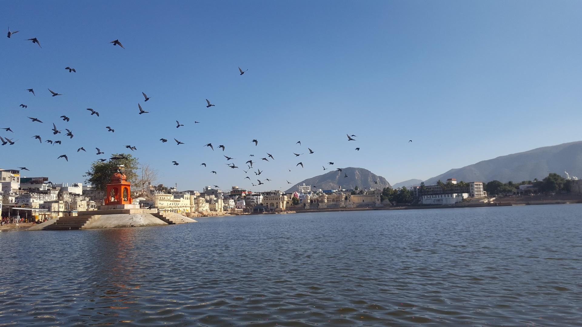 Visiter Pushkar - Inde
