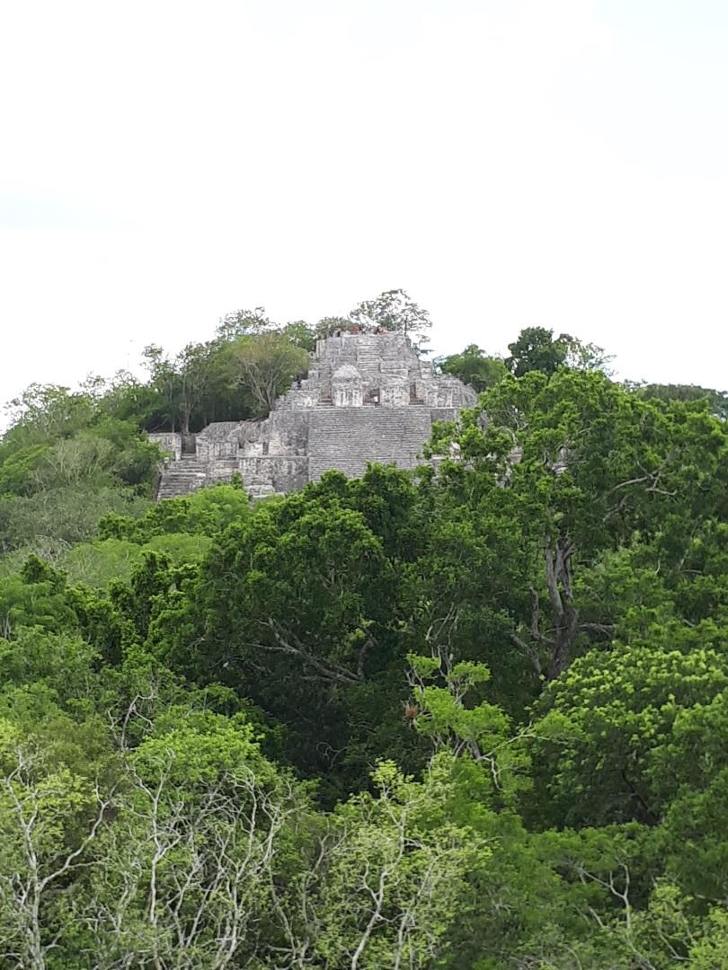 Visiter Calakmul - Mexique