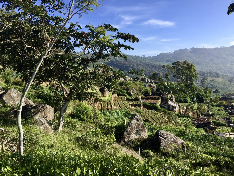 Visiter Kandy - Sri Lanka