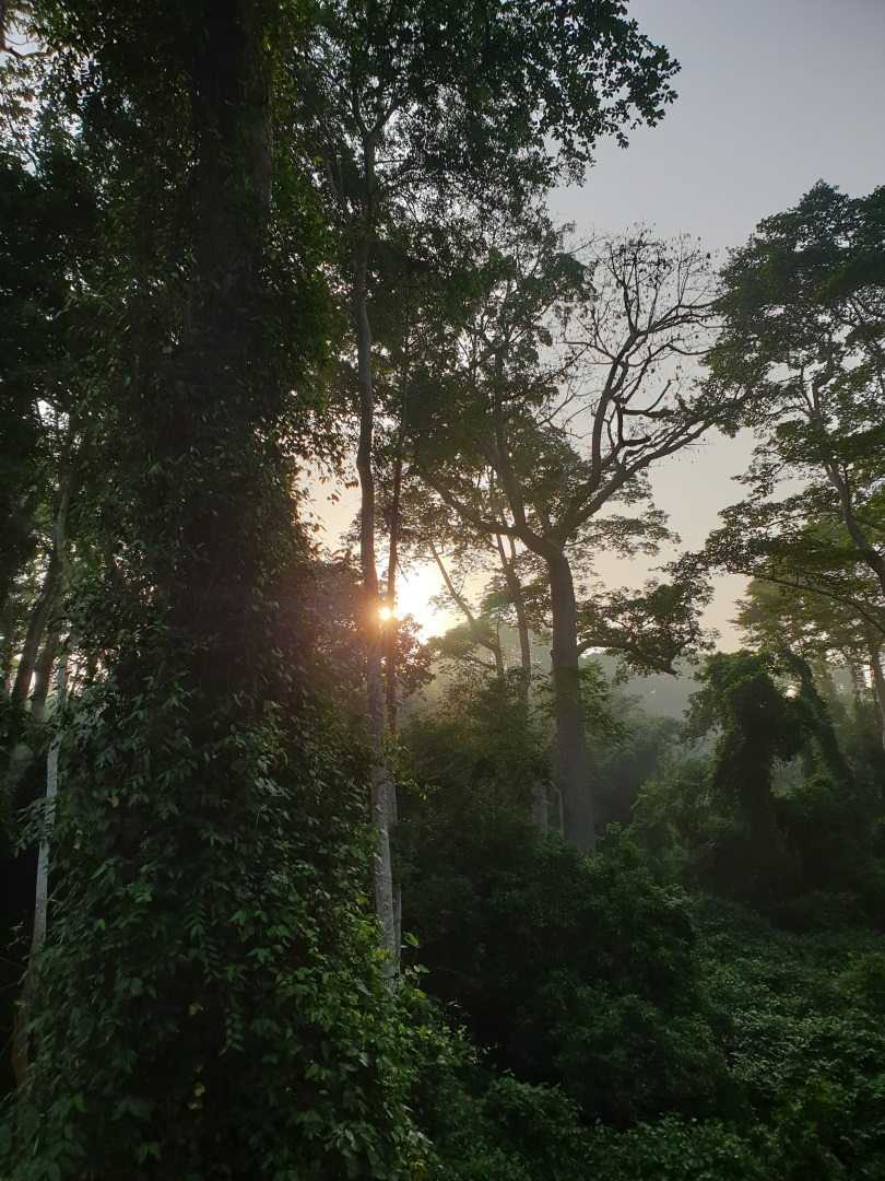 Visiter Abomey - Benin