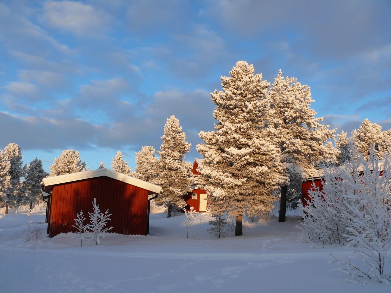 Visiter La Laponie en motoneige - Laponie