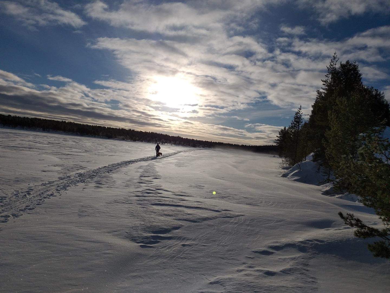 Visiter La Laponie en randonnée ski nordique - Laponie