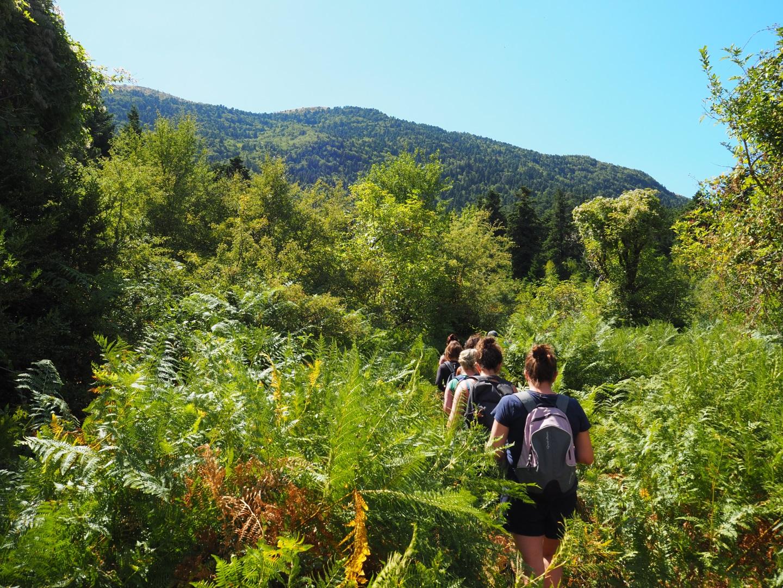 Visiter Le parc de Llogara - Albanie