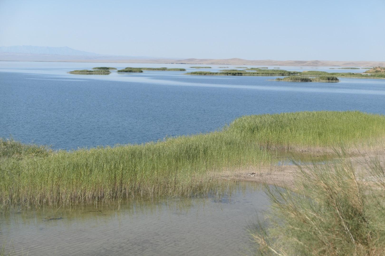 Visiter Le Lac Aydar - Ouzbékistan