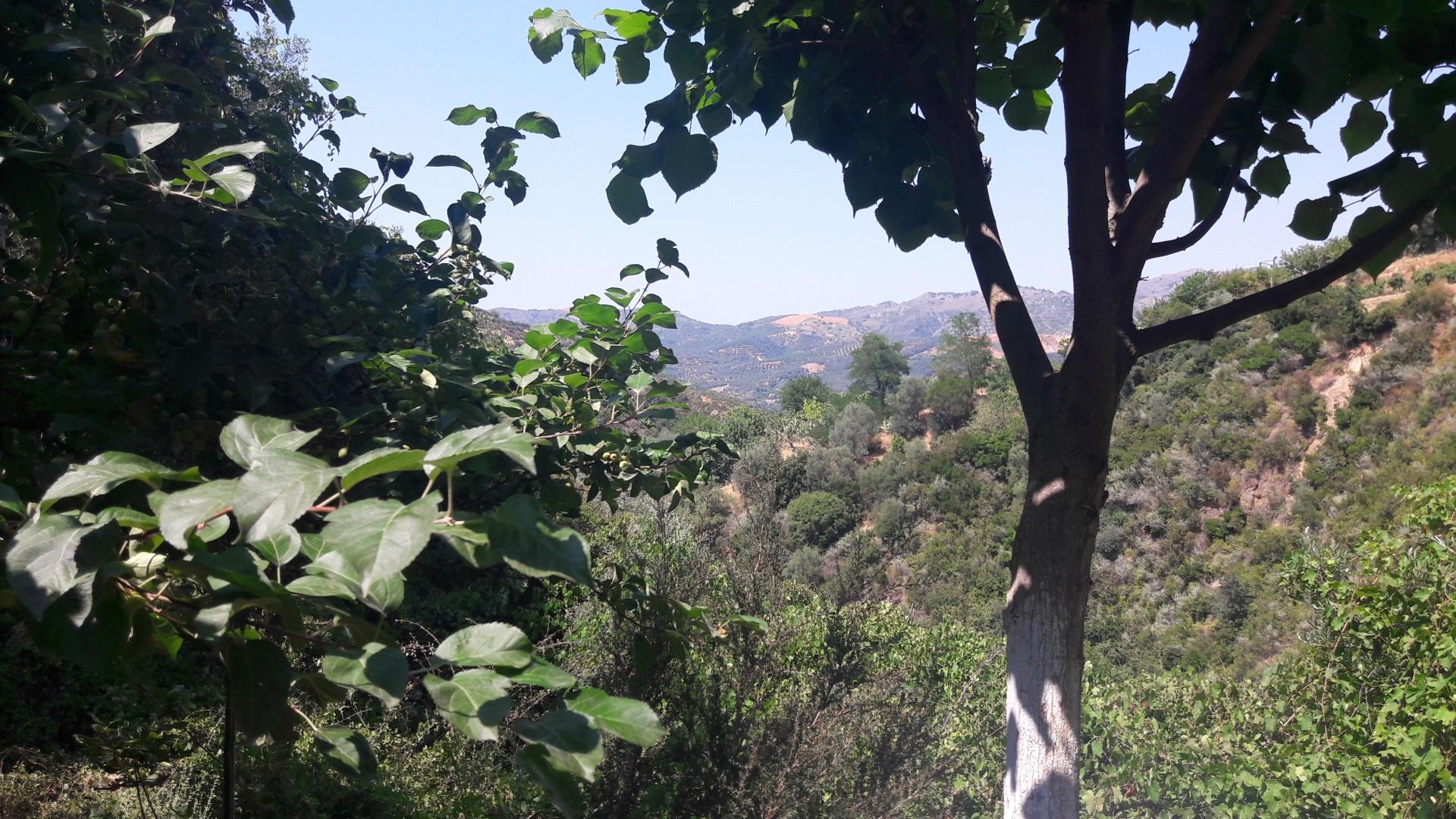 Visiter Chania - Crète