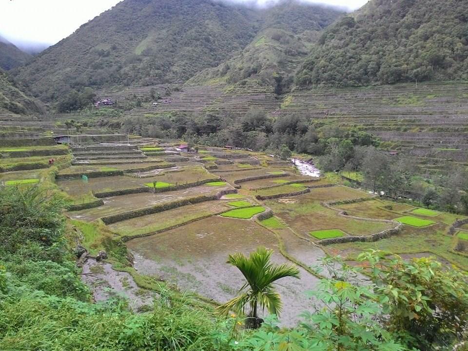 Rencontre avec les ethnies Kalinga et Ifugao dans les montagnes et rizières en Le Vakul festival a lieu les 25 et dans les îles Batanes.