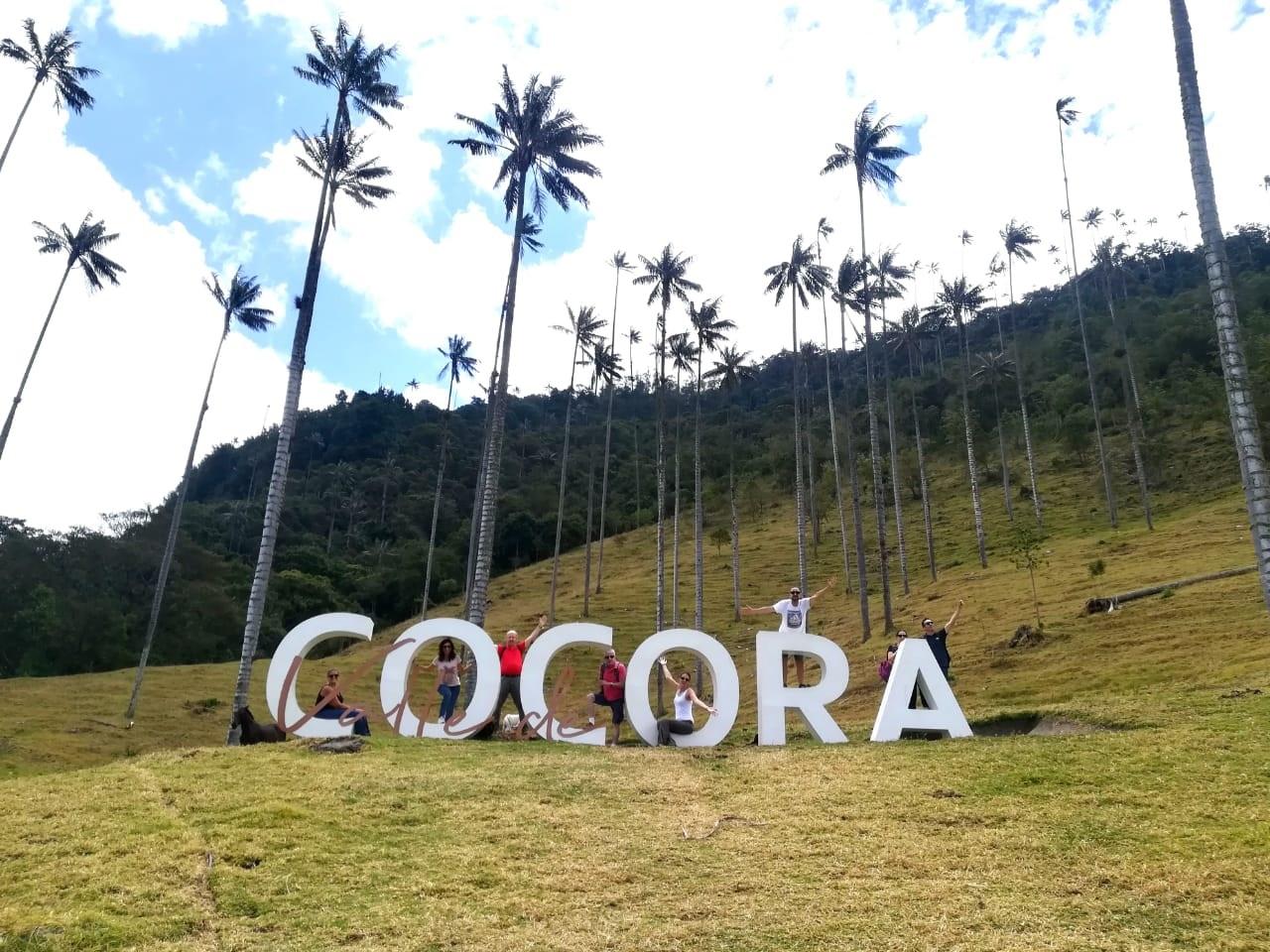 Visiter La vallée de Cocora - Colombie