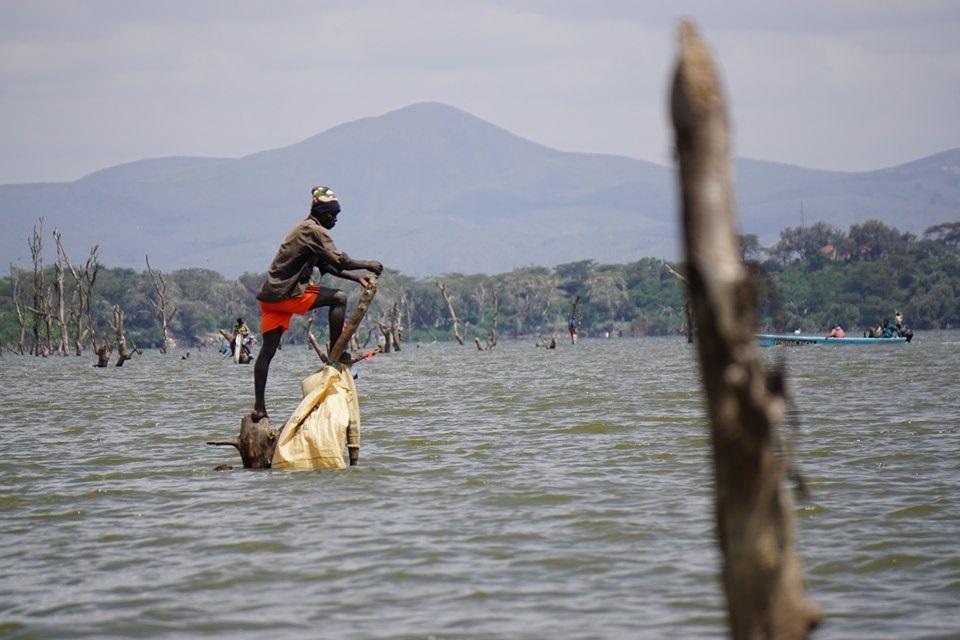 Visiter Le lac Naivasha  - Kenya