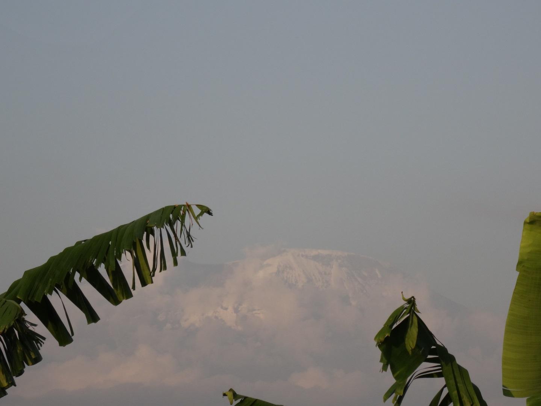 Visiter Arusha - Tanzanie