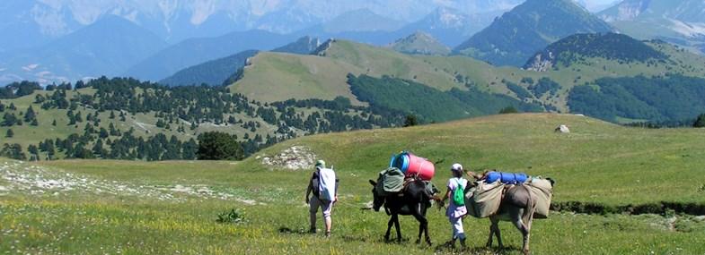 Circuit Rhône-Alpes - Jour 5 : La réserve des Hauts-Plateaux (1600 m)