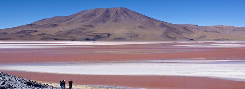 Circuit Pérou/Bolivie - Jour 12 : Villamar (4100 m) - Laguna Verde (4300 m) - Laguna Colorada (4270 m)
