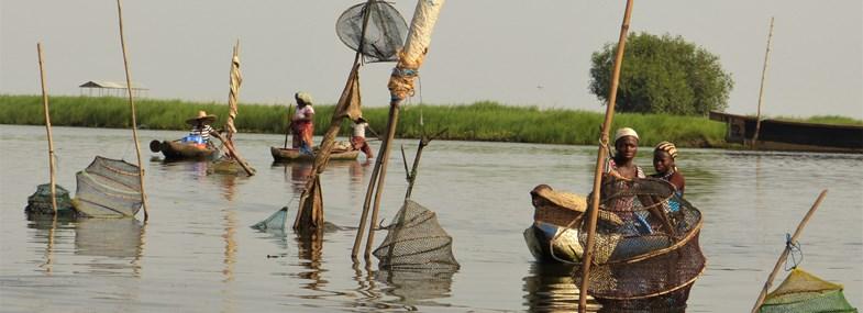 Circuit Benin - Jour 3 : Ouidah - Possotomé (autour du Lac Aheme)