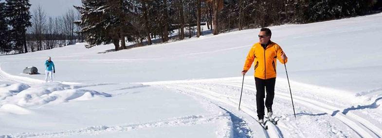 Circuit Laponie - Jour 6 : Randonnée ski nordique