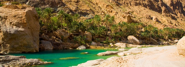 Circuit Oman - Jour 6 : Wadi Bani Khalid - Sur - Village de Tiwi - Fins