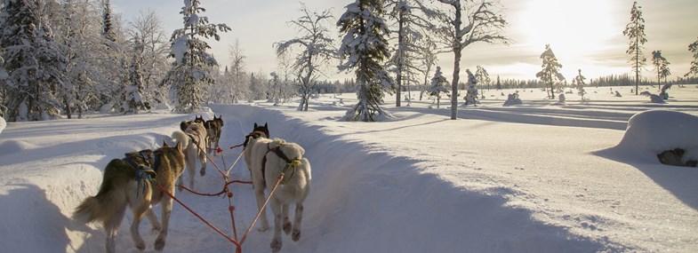 Circuit Canada - Jour 3 : Motoneige