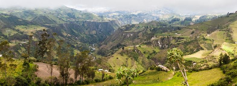 Circuit Equateur - Jour 6 : Saquisili - Plantations de roses - Chugchilan