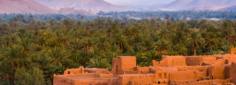Circuit Maroc - Jour 2 : Ouarzazate - Ouled Driss