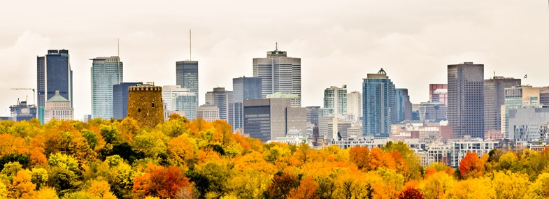 Circuit Canada - Jour 5 : Montréal - Québec