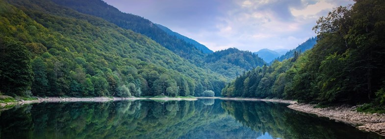 Circuit Montenegro - Jour 5 : Curevac - Parc national de Biogradska - Kolasin