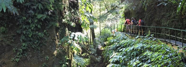 Circuit Açores - Jour 7 : Grotte de Carvao - Ponta Delgada