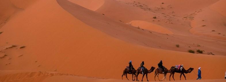 Circuit Maroc - Jour 4 : Les dunes de l'Erg Chebbi