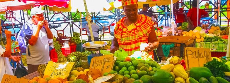 Circuit Guadeloupe - Jour 1 : Vol pour la Guadeloupe