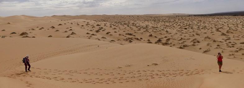 Circuit Mauritanie - Jour 2 : Atar - Afam el Mezrougat - Touiyert