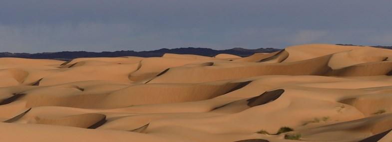 Circuit Mauritanie - Jour 3 : Touiyert - Chinguetti