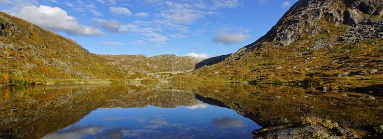 Circuit Norvège - Jour 7 : Vallée des Cygnes