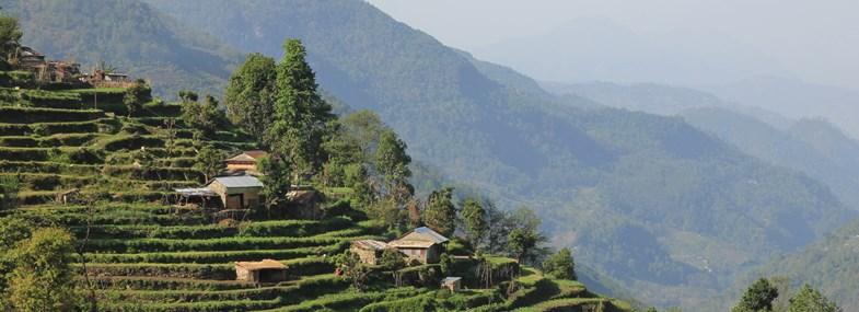 Circuit Népal - Jour 6 : Australian Camp - Landruk