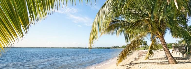 Circuit Cuba - Jour 6 : Vinales - Zapata - Playa Larga