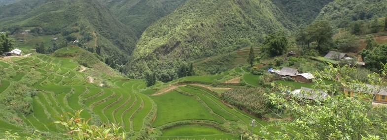 Circuit Sri Lanka - Jour 4 : Sigiriya - Dambulla - Matale - Medagama