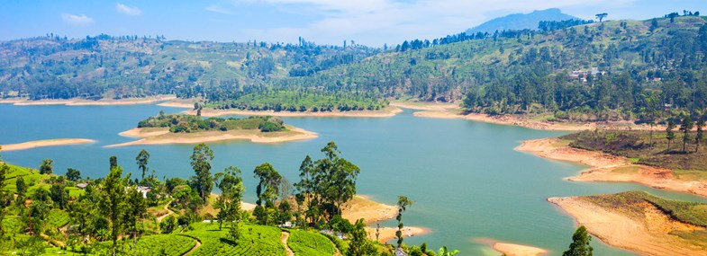 Circuit Sri Lanka - Jour 8 : Kandy - Nuwara Eliya - Nanu Oya - Ella