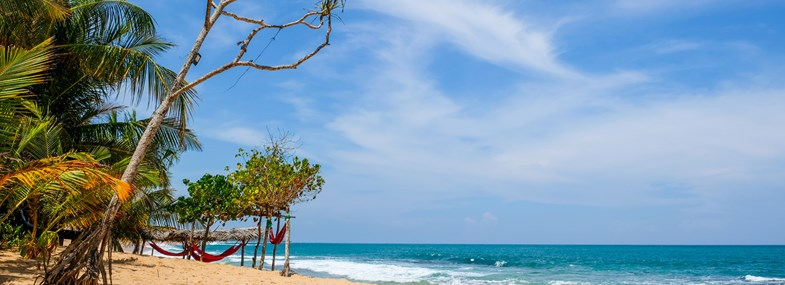 Circuit Sri Lanka - Jour 10 : Uda Walawe - Mirissa
