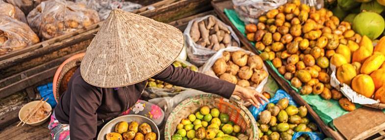 Circuit Vietnam-Cambodge - Jour 12 : Ba Tri - Ho Chi Minh Ville