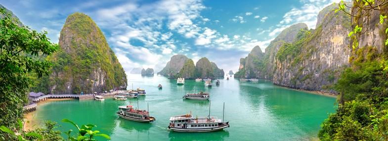 Circuit Vietnam - Jour 8 : Baie d'Halong - Ninh Binh
