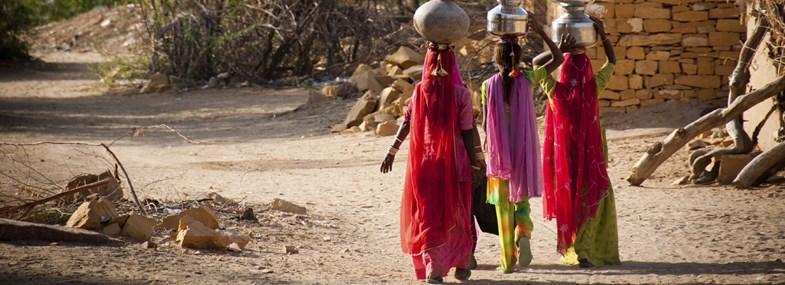 Circuit Inde - Jour 6 : Village du désert en immersion