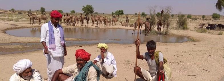 Circuit Inde - Jour 7 : Village du désert en immersion