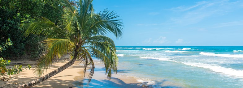 Circuit Costa Rica - Jour 8 : Rincon de la Vieja - Extension balnéaire à Nicoya