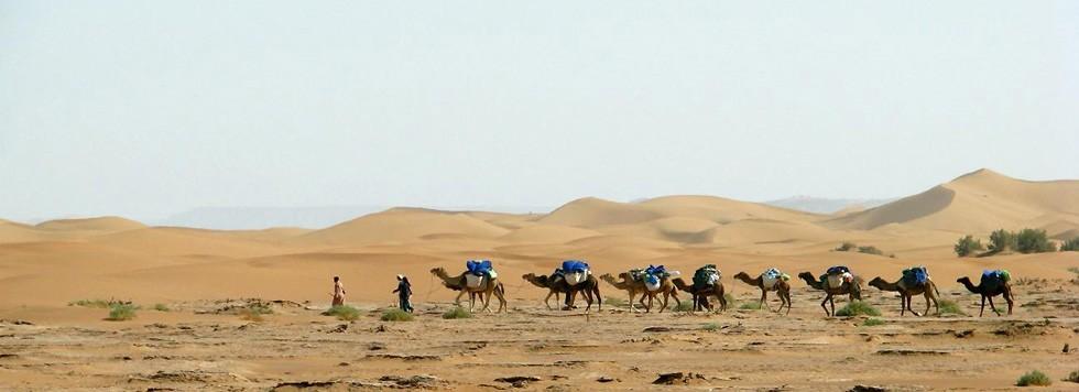Circuit Maroc La Route Des Caravanes Les Covoyageurs